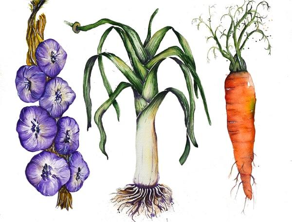 Leek And Veggies Art | Drivdahl Creations