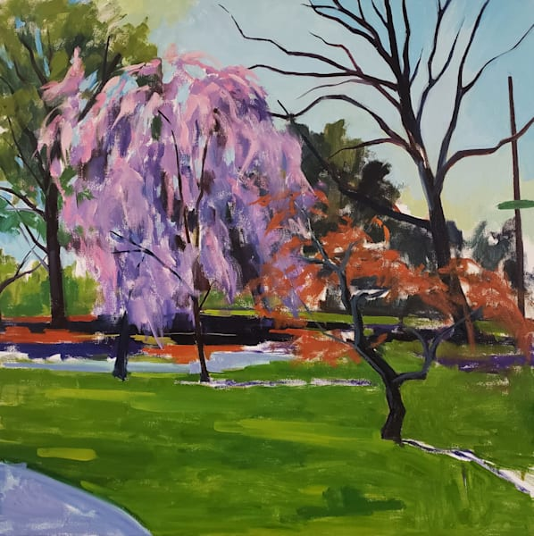 Weeping Cherry / Across From Shofuso Art | Jenn Hallgren Artist