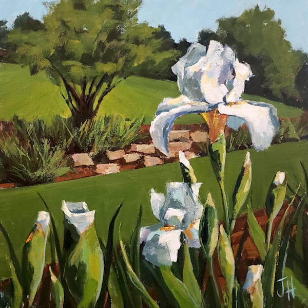 Presby Iris Gardens Iv Art | Jenn Hallgren Artist