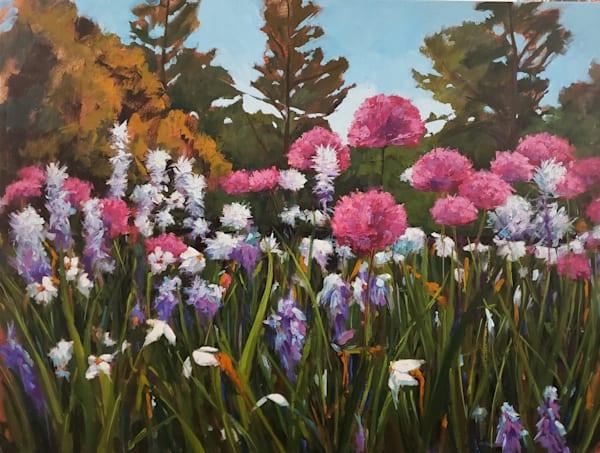 Longwood Gardens, Allium Iii Art | Jenn Hallgren Artist