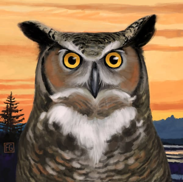 Great Horned Owl   Studio Girard