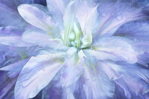 Garden Lilies 2 Art | KJ's Studio