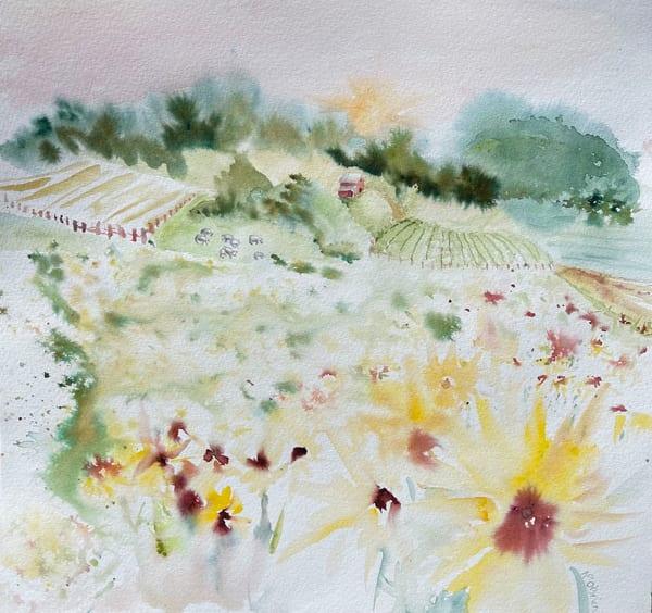 Sunflower Prairie And Farm Fields Art | Color Splash Ranch