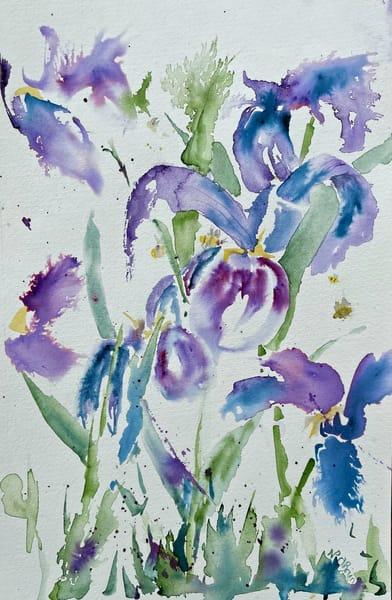 Bees N Iris Dance Art   Color Splash Ranch