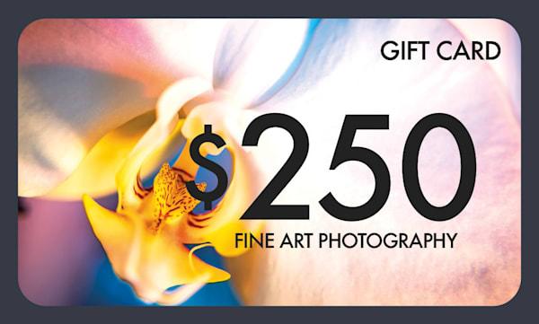 $250 Gift Card   Justin Mikkelsen Photography, LLC