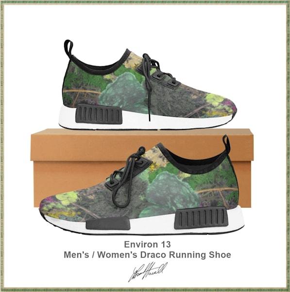 Environ 13 Draco Running Shoe