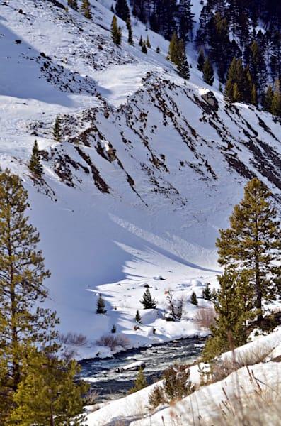 Montana Path To The River
