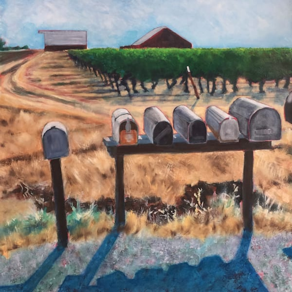 Two barns, a vineyard, and rural mailboxes greet the morning in Yolo County, California.