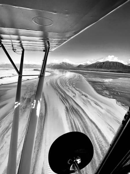 Bushwheels And Tidal Patterns Photography Art   Visionary Adventures, LLC