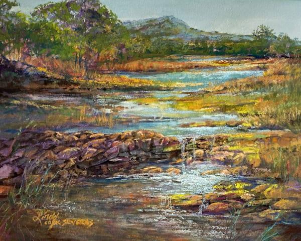 Lindy Cook Severns Art | A Splendid Breakthrough, original pastel