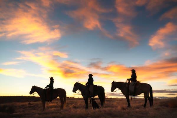 Three Cowboys Photography Art | nancyney