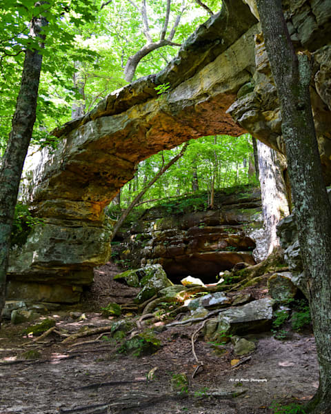 Natural Bridge Photography Art | N2 the Woods Photography - Nature and Wildlife Artwork