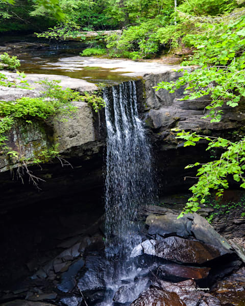 Laurel Falls Photography Art | N2 the Woods Photography - Nature and Wildlife Artwork