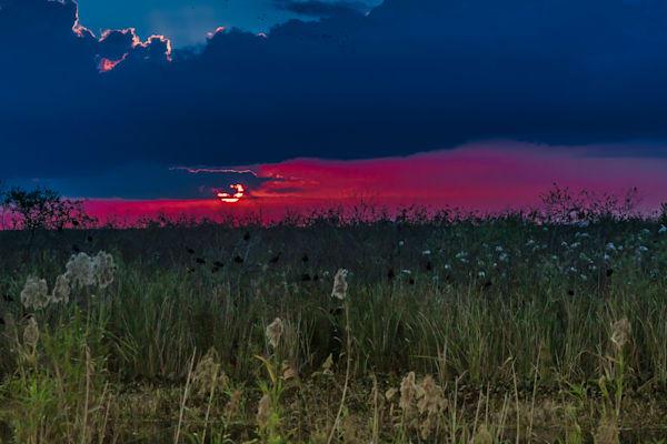 River Grass Photography Art | Elton Pride Photography LLC