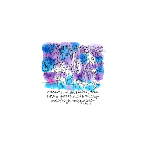 """honey island swamp (critters), south louisiana (""""after dark"""" collection):  tiny haiku art prints in atmospheric watercolor available for purchase online"""
