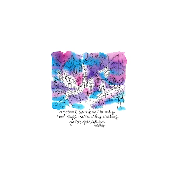 """honey island swamp (gators on logs), south louisiana (""""after dark"""" collection):  purchase online tiny haiku art prints in atmospheric watercolor"""