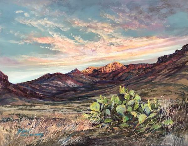Lindy Cook Severns Art | Beginnings, original pastel