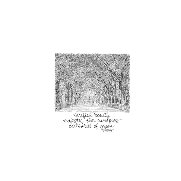 central park (the mall), new york city:  tiny haiku art prints in elegant pen available for purchase online