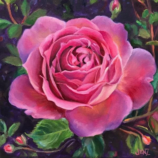 Pink China Rose Art   Jennifer Zardavets Art