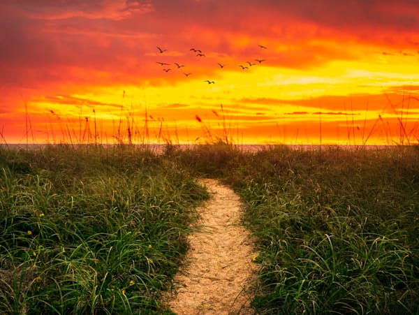 Path to Bliss   Susan J Photography