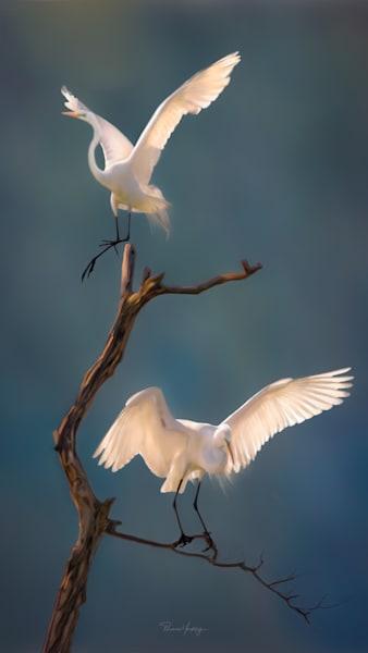 Like Memory, Like Prayer Photography Art | Thomas Yackley Fine Art Photography