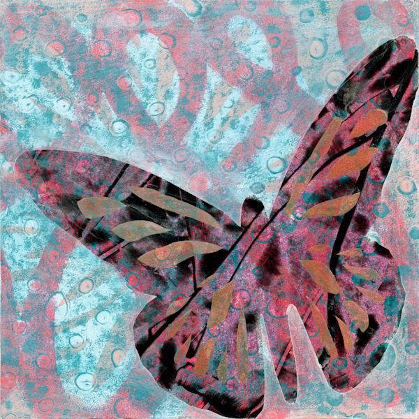 Butterfly 3 Art | Jennifer Akkermans