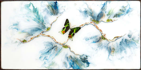 Blue Tiger (Real Butterfly) Art | Breathe Art Paintings
