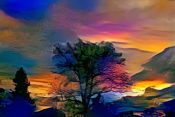 Singing Tree Sunset SIGNED Large File Master