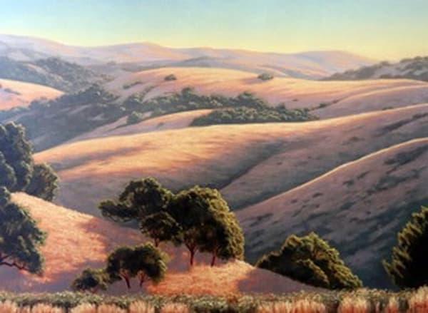 Morning Sunshine View Art   Terry Sauve Fine Art