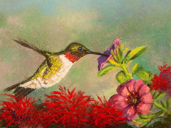 Ruby Throated Hummingbird   Original Art   Mark Grasso Fine Art