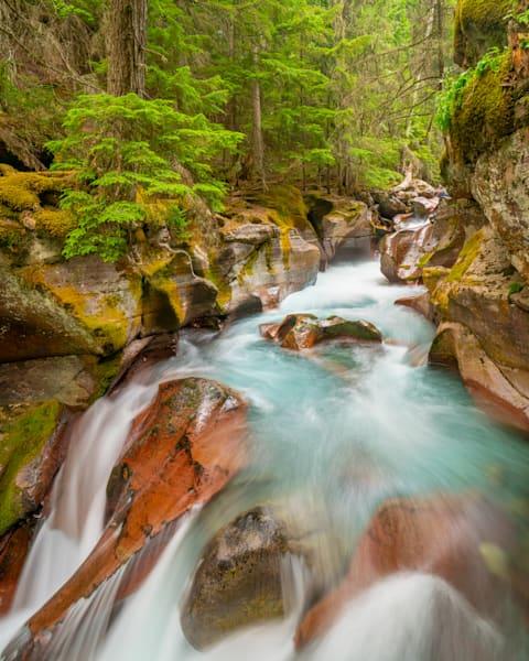 Gnp Avalanche Creek Photography Art | John Martell Photography