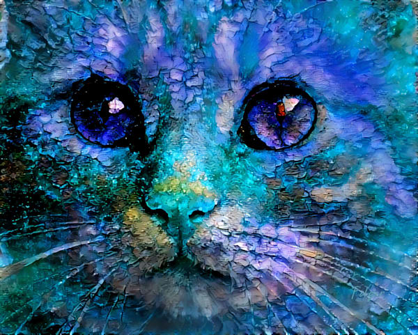 Cat Cyan - SIGNED - Large File - Master