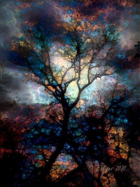 Tree Dancer Art | Jacob Folger Artist