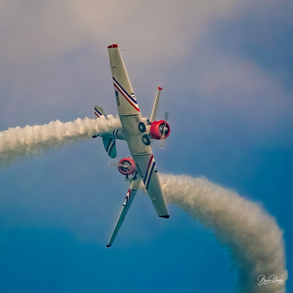 """Rotating Gallery: """"Airshow!"""""""
