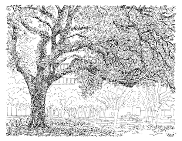 middleton library, louisiana state university:  fine art prints in elegant pen available for purchase online