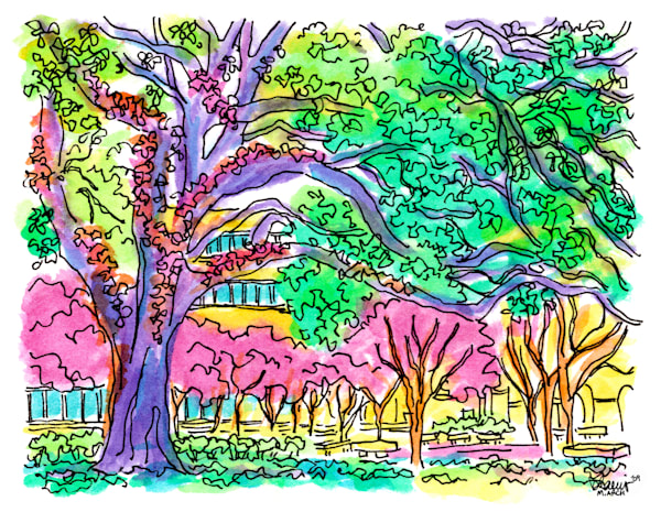 middleton library, louisiana state university:  fine art prints in cheerful watercolor available for purchase online