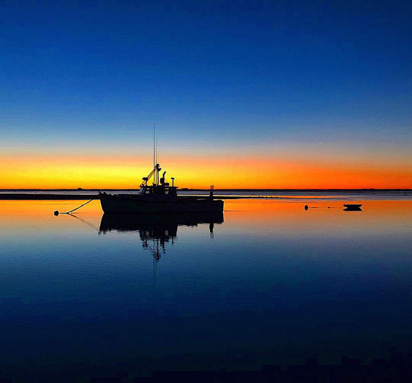 Night Light At Chatham Fish Pier  Photography Art | The Colors of Chatham