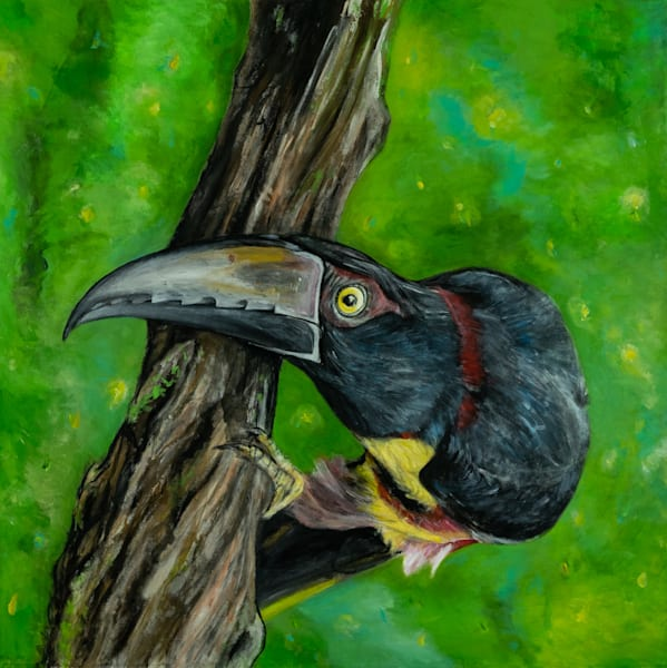 Fireflies & Jungle  Skies Art | Blac Rhino Art Group