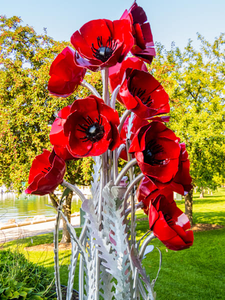 Red Metal Flowers Photography Art   Lake LIfe Images