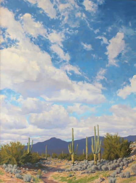 Desert Skies Art   Diehl Fine Art