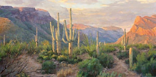 Twilight In Sabino Canyon Art   Diehl Fine Art