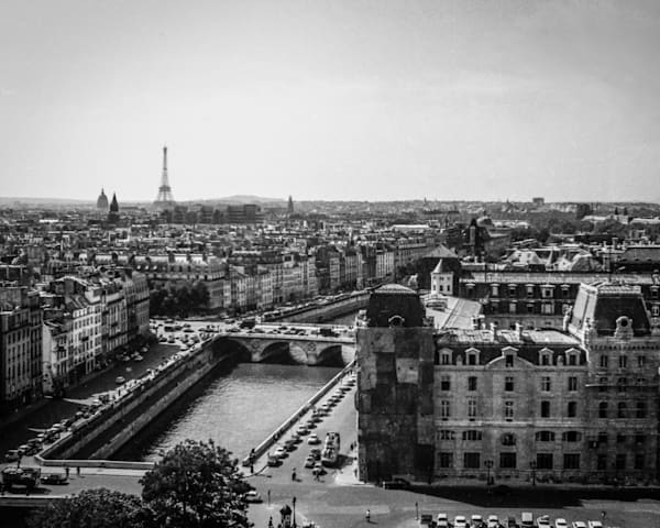 Paris, View From Notre Dame Photography Art   Nick Levitin Photography