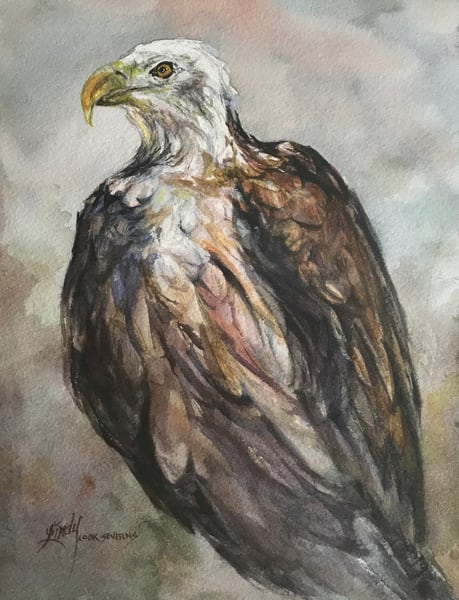 Lindy Cook Severns Art | Ruffled With Pride, print