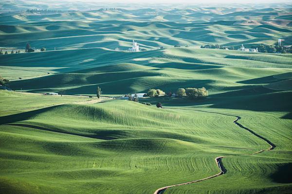 Velvet Hills - Spring hills of Eastern Washington landscape photograph print