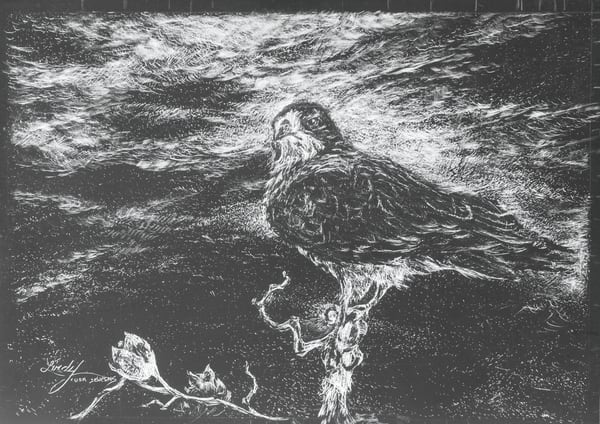 Lindy Cook Severns Art | Ahead of the Storm, print