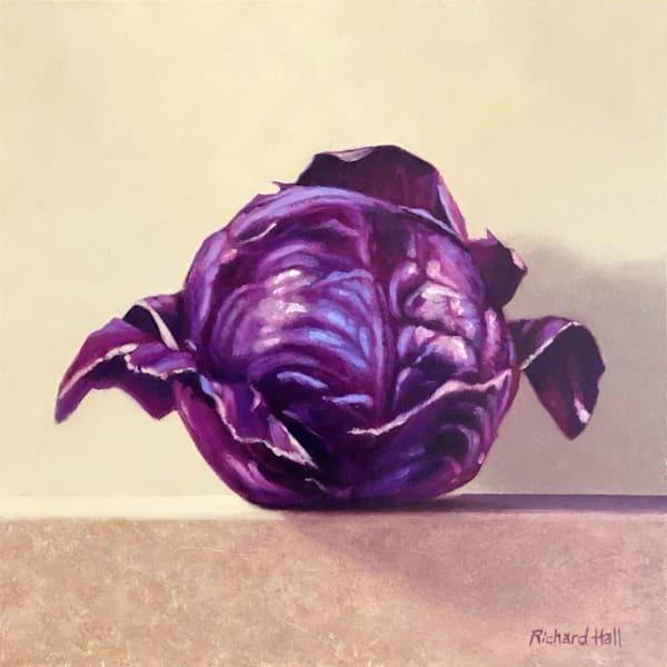 Red Cabbage Art | Richard Hall Fine Art