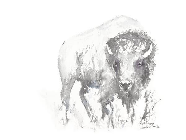 Bison On The Plains  Art | Debra Bruner Studio