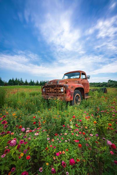Summertime Yesteryear Photography Art | Teaga Photo