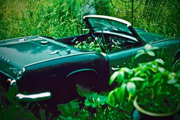 Ontario Sports Car Art | Wild Ponies creations
