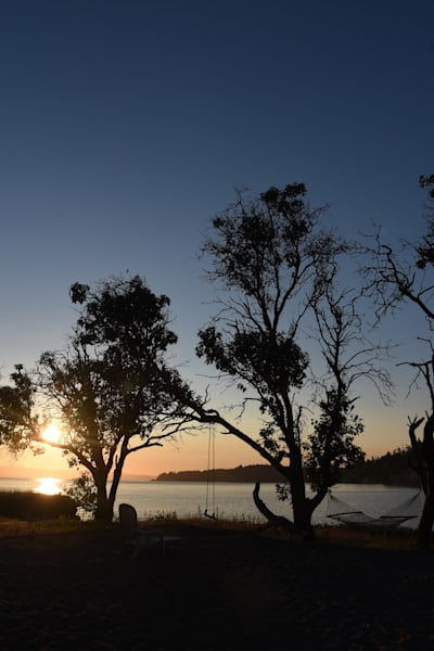 Silhouettes At Sunset Photography Art | KAT MILLER-PHOTO ARTIST